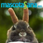Mascotasana